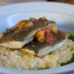 "Sunburst Farms Trout, Charleston Gold Rice ""Risotto"", Grilled Spring Courgettes, Marinated Heirloom Tomatoes and Herb Broth"